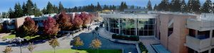 Bellevue College campus with fall colors and blue sky